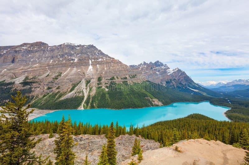 Peyto jeziora Banff Krajowy park Alberta Kanada obrazy royalty free