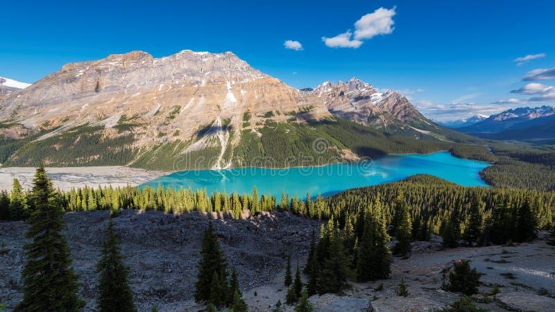Peyto jezioro w Banff parku narodowym Kanada zdjęcia stock