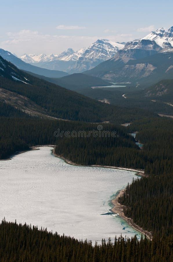 Peyto Lake Royalty Free Stock Image