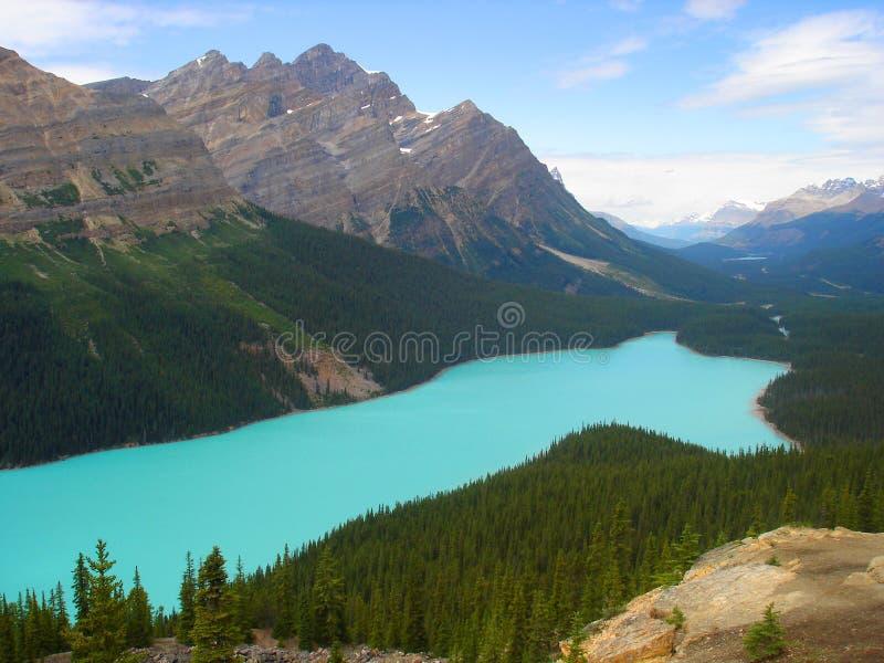 Download Peyto Lake stock photo. Image of cyan, mountain, peyto - 3402374