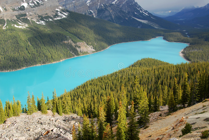 Download Peyto Lake Royalty Free Stock Image - Image: 5540096