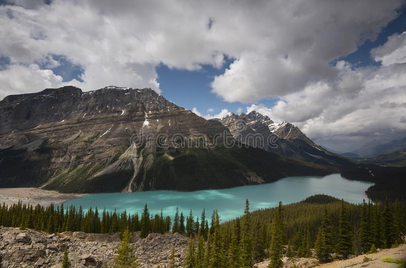 Peyto Lake, Alberta, Kanada stockfotos
