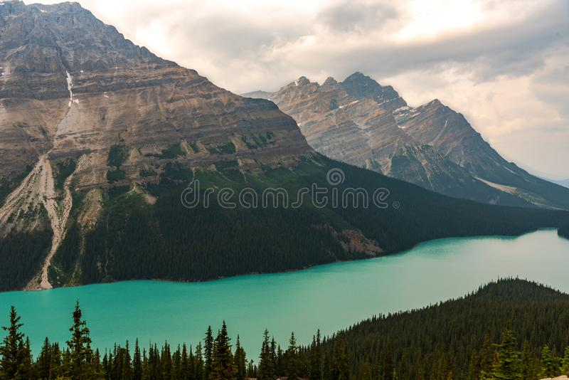 Peyto Lake, Banff Canada, in the Rockies royalty free stock images