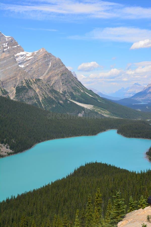 Peyto Lake Canada. Peyto Lake in Alberta Canada royalty free stock photo