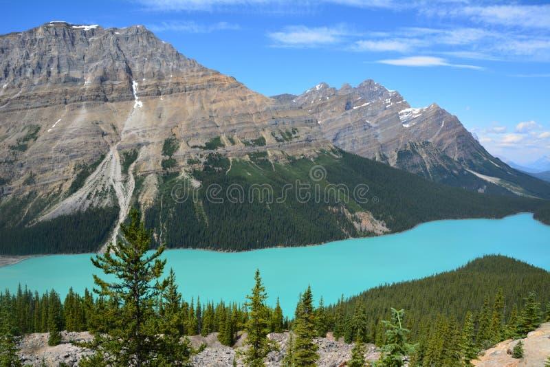 Peyto Lake Canada. Peyto Lake in Alberta Canada stock photography