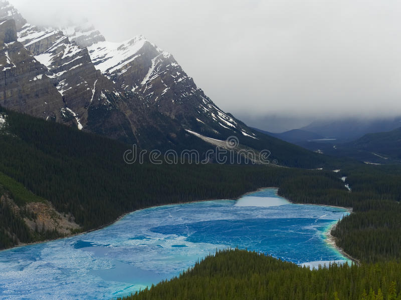 Peyto Lake Cracking in the Springtime with Mountain Backdrop royalty free stock image