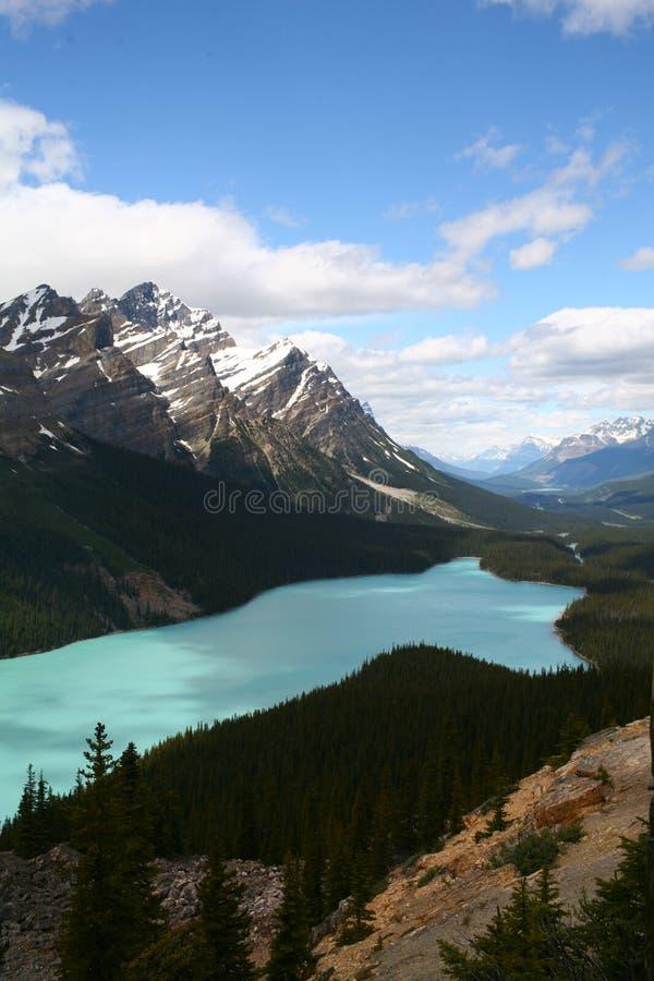 Peyto lake at spring, Banff National park, Canada stock photography