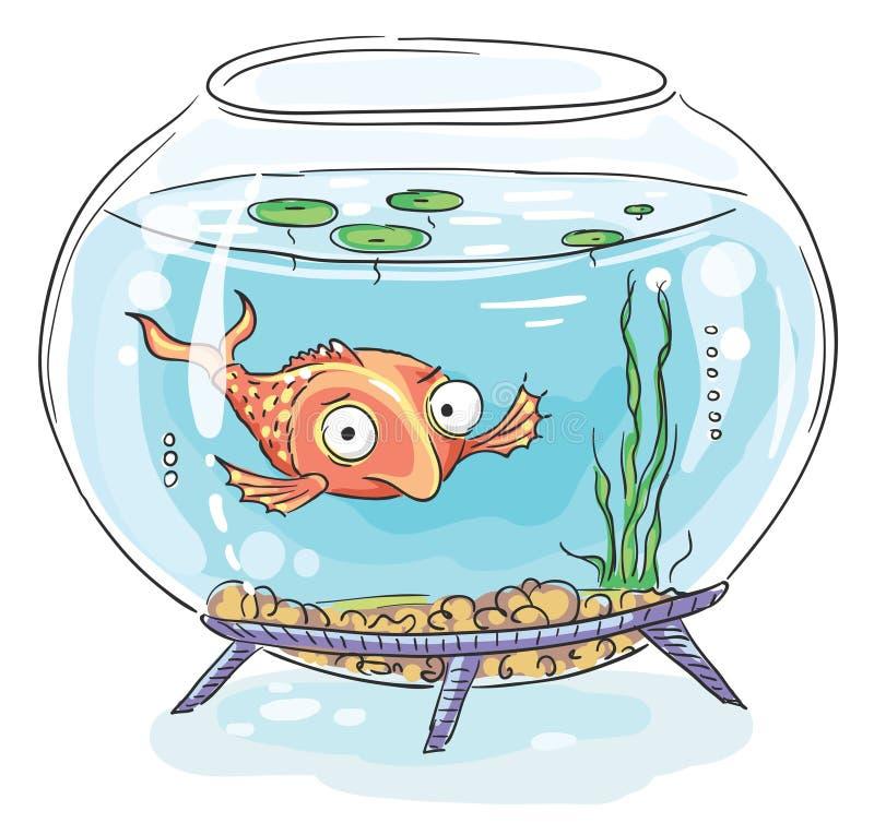 Pez de colores de la historieta en un fishbowl ilustración del vector