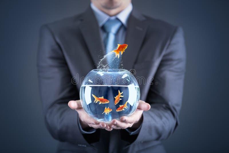 Pez de colores de la tenencia del hombre de negocios en fishbowl fotos de archivo libres de regalías