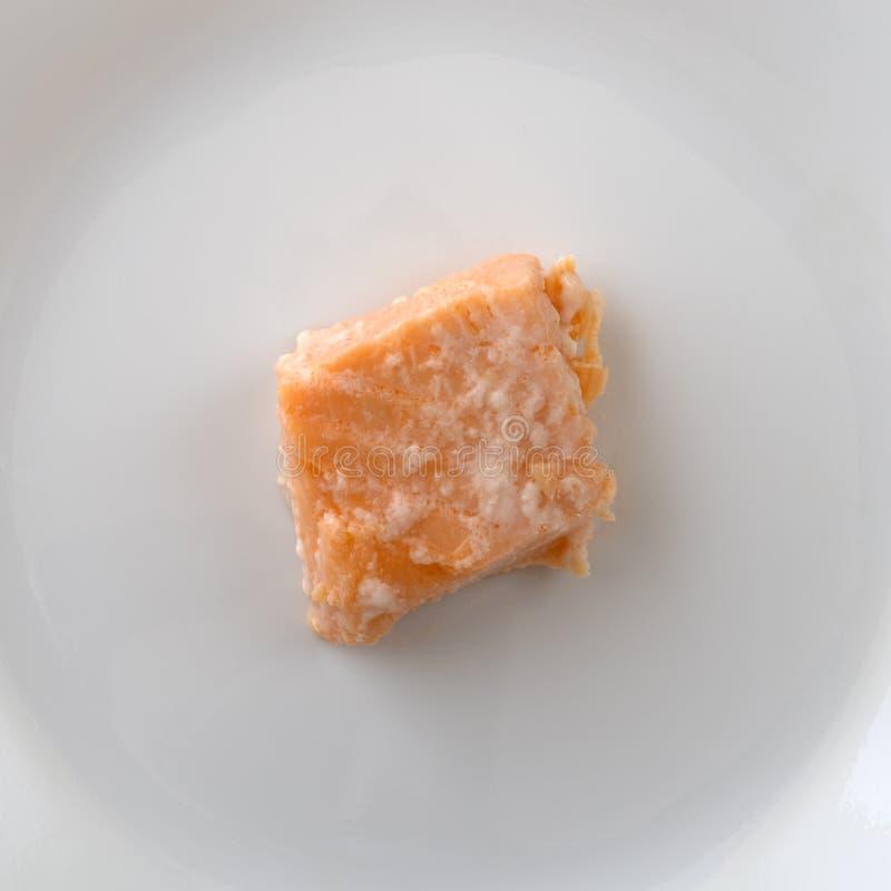 Pezzetto di salmone su un piatto bianco immagini stock