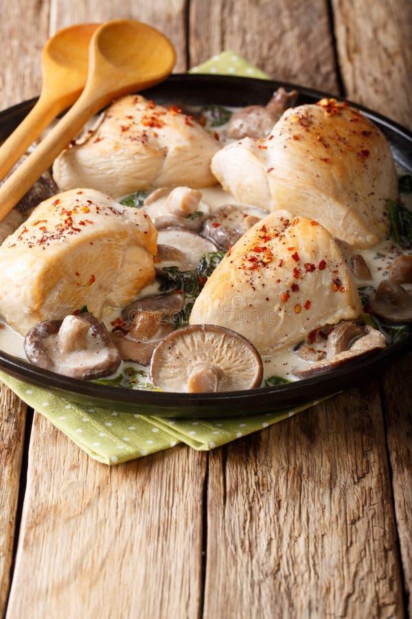 Pezzi di pollo con i funghi e gli spinaci selvatici in un sa cremoso fotografia stock libera da diritti