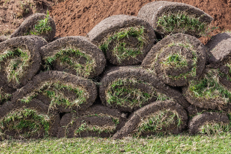 Pezzi rotolati zolle dell'erba fotografia stock