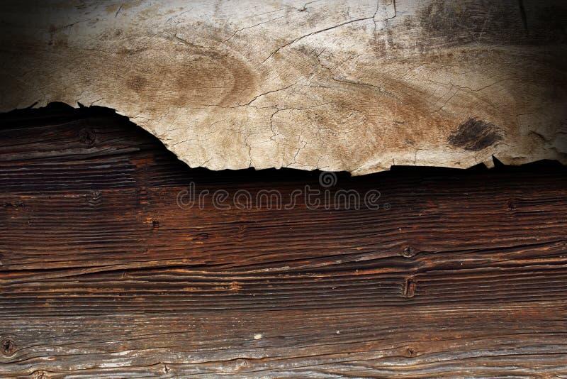 Pezzo del pioppo di legno fotografia stock