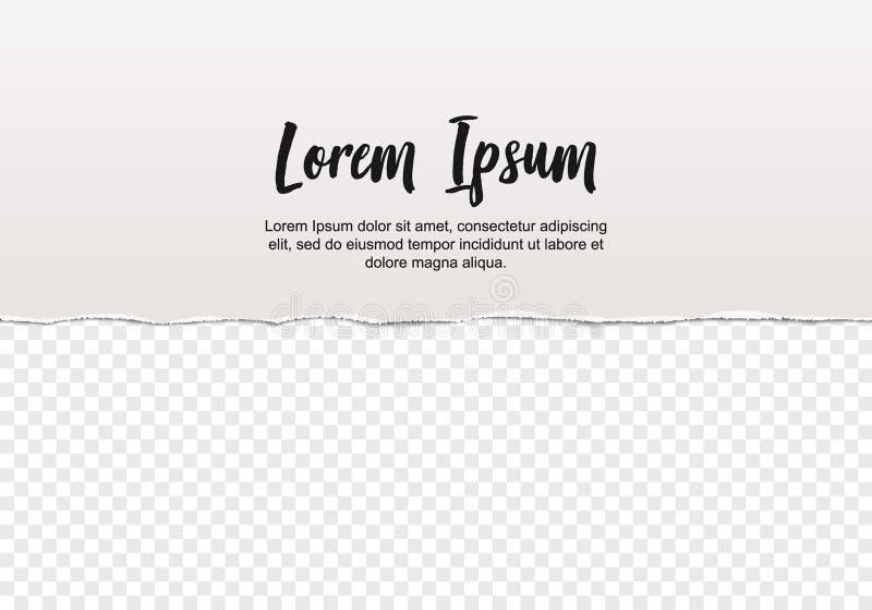Pezzo di carta lacerata bianca con i bordi e l'ombra irregolari strappati, illustrazione di vettore, modello astratto illustrazione di stock