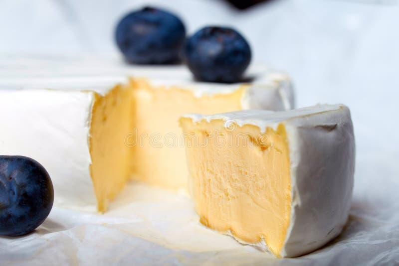 Pezzo di formaggio del camembert con il mirtillo fotografia stock