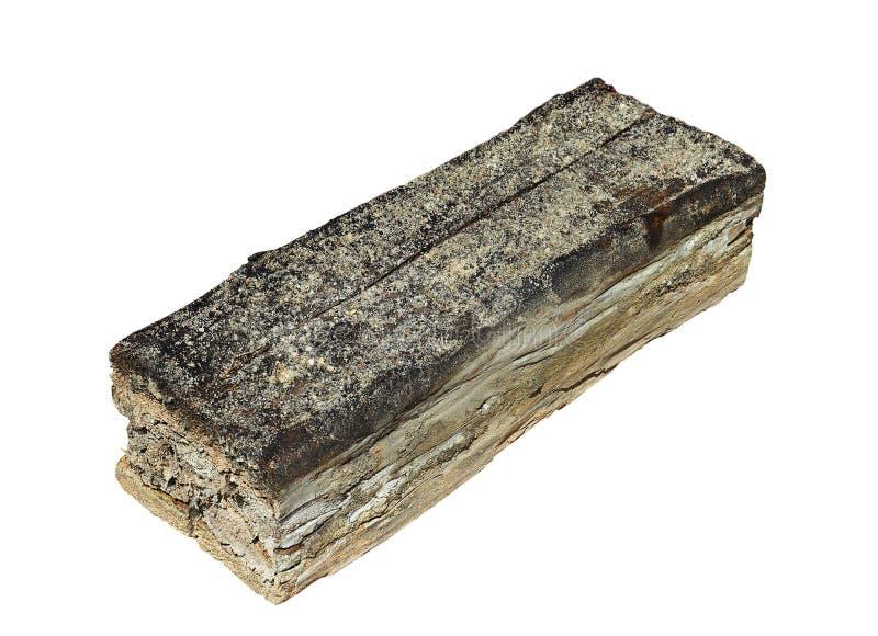 Pezzo di legno isolato decomposto dal fungo immagini stock libere da diritti