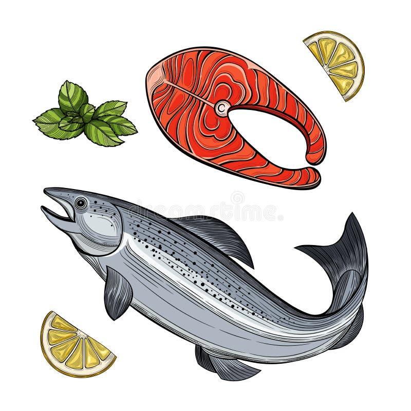 Pezzo di pesce di color salmone Frutti di mare royalty illustrazione gratis
