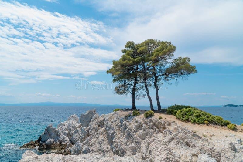 Pezzo di Piridise, Amarandos, Skopelos fotografia stock libera da diritti