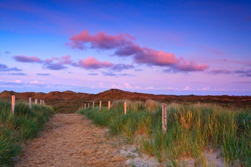 Pfad in den Sanddünen am Sonnenuntergang stockfotografie