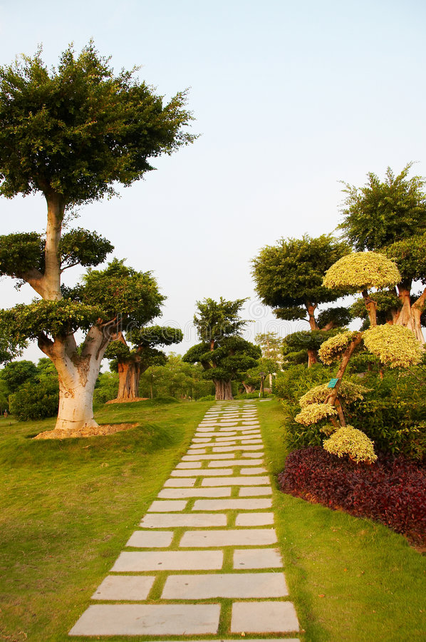 Pfad durch Bäume stockbild