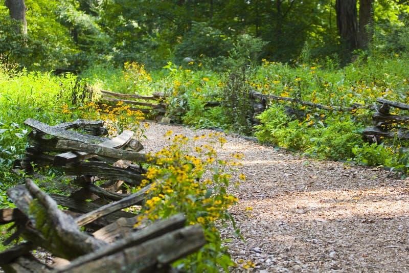 Pfad durch Zaun und Wildflowers stockfotografie
