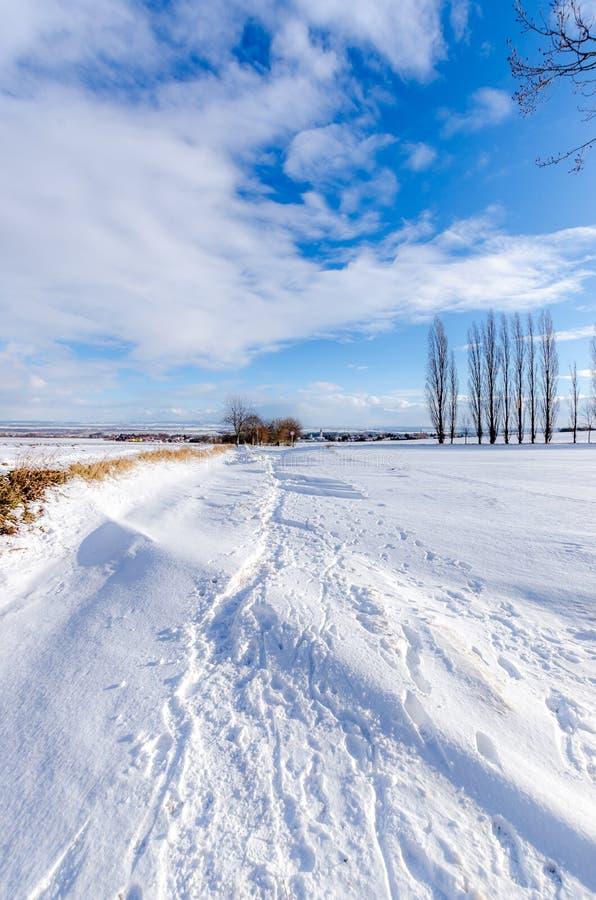 Pfad im Schnee stockfotografie