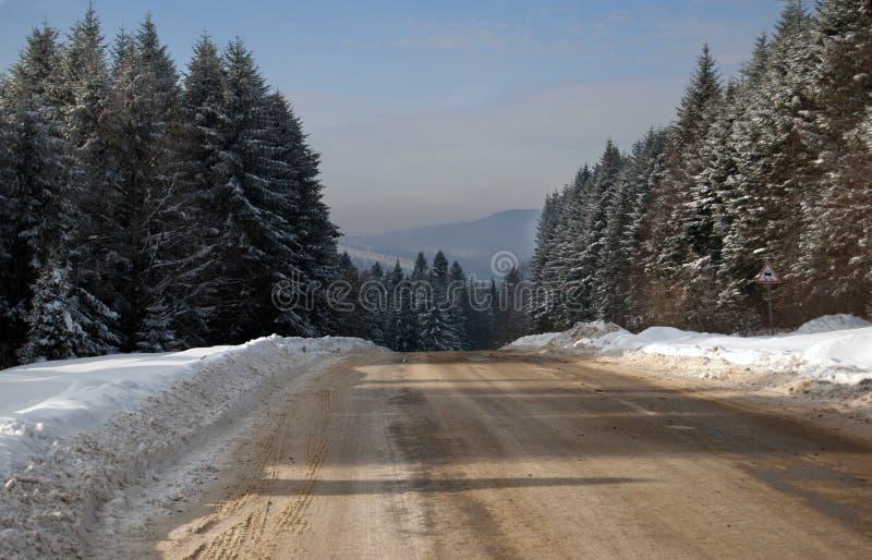 Download Pfad im Winterwald stockfoto. Bild von wald, kalt, landwirtschaftlich - 27734396