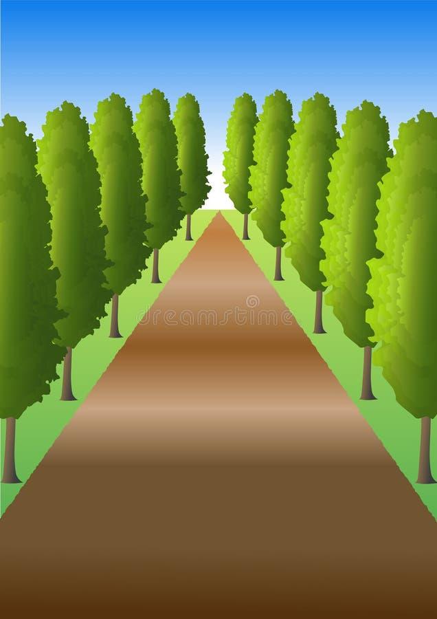 Pfad mit Bäumen vektor abbildung