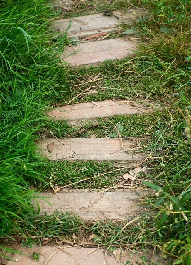 Pfad und grünes Gras lizenzfreies stockfoto