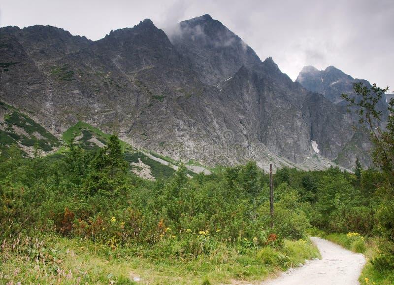 Pfad zu den Bergen stockbilder