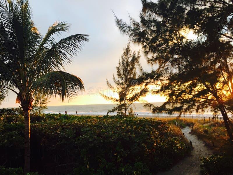 Pfad zum Strand lizenzfreie stockfotos