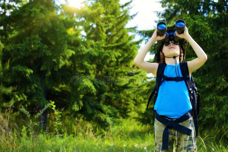 Pfadfinder im Wald lizenzfreie stockbilder