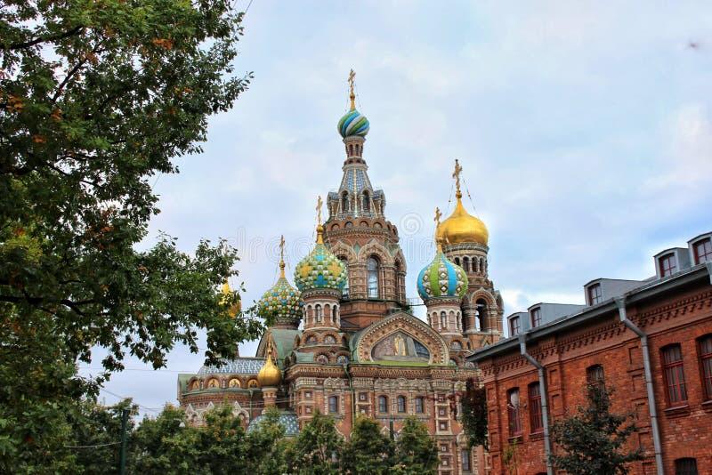 Pfarrkirche des Heiligen am Blut Sankt-Petersburg lizenzfreie stockfotografie