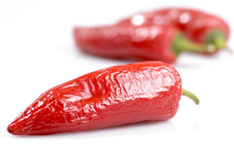 Pfeffer der roten Paprikas lizenzfreie stockbilder