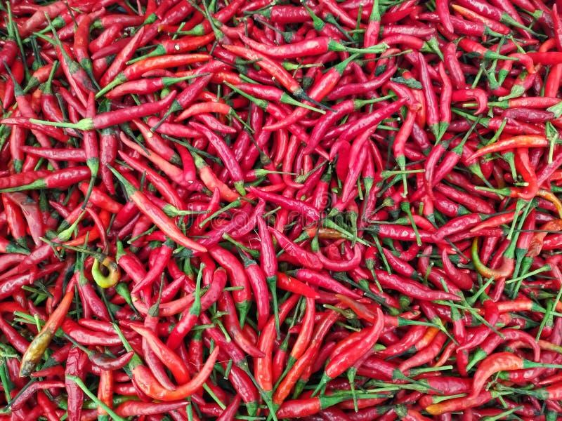 Pfeffer der roten Paprikas im Markt für Hintergrund lizenzfreie stockfotos