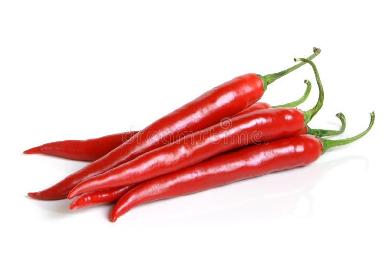 Pfeffer des roten Paprikas lizenzfreies stockbild