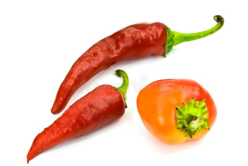 Pfeffer des roten Paprikas auf dem weißen Hintergrund stockfoto