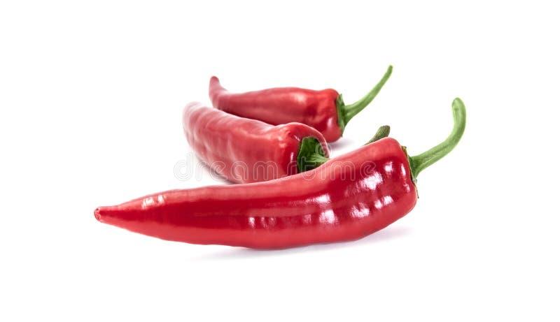 Pfeffer des roten Paprikas trennte lizenzfreie stockfotografie