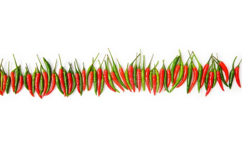 Pfeffer des roten Paprikas trennten lizenzfreie stockfotos