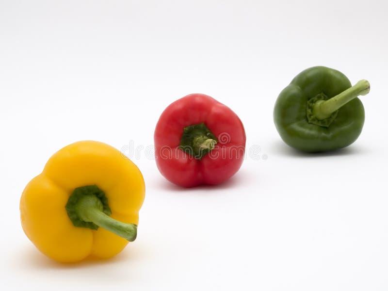 Pfeffer gelbes Grün und Rot stockbilder