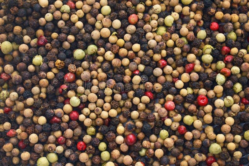 Pfefferkörner aus roten, weißen, grünen und schwarzen Pfefferkörnern, ganz stockfoto