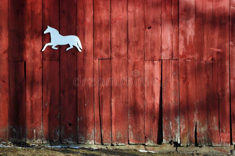 Pferd auf Seite der Scheune stockfotografie