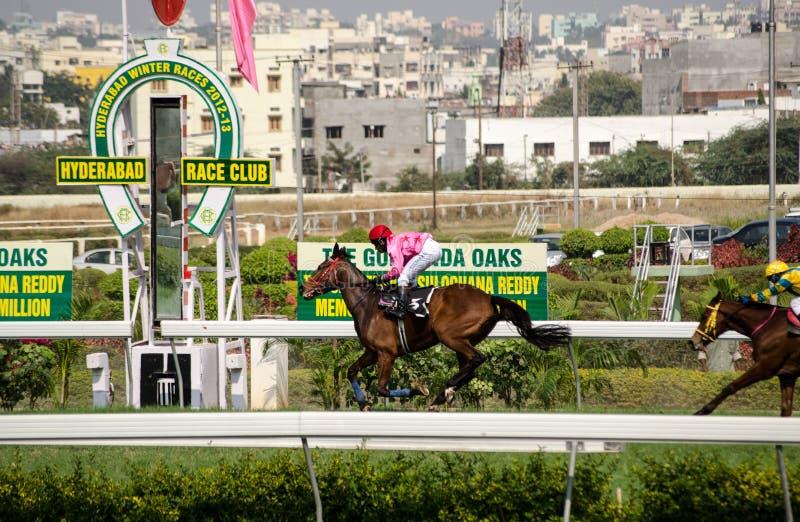 Pferd, Das In Hyderabad Gewinnt Redaktionelles Stockfotografie