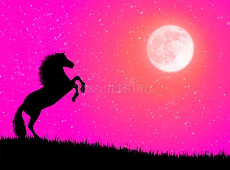 Pferd in der Nacht vektor abbildung