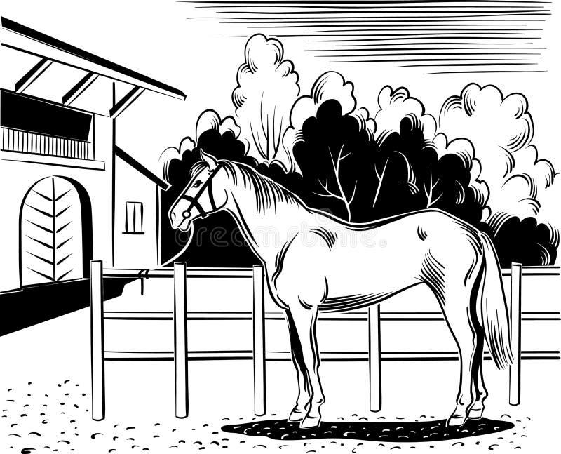 Pferd gebunden am Zaun lizenzfreie abbildung