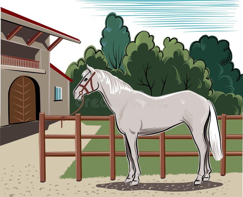 Pferd gebunden am Zaun vektor abbildung