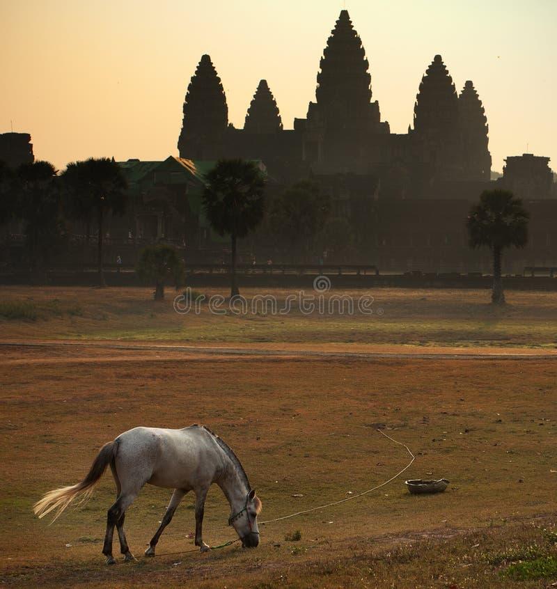 Angkorwat lizenzfreie stockbilder