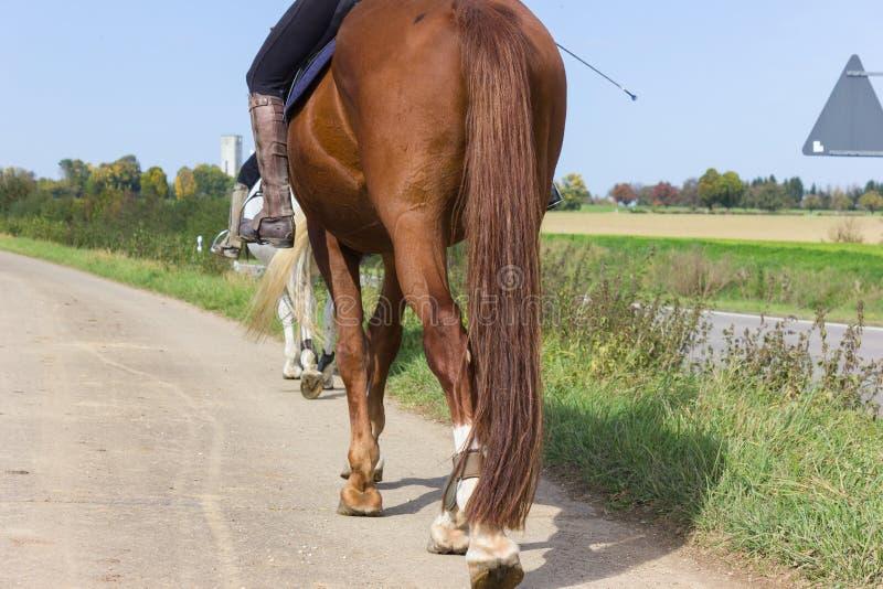 Pferd mit zwei Damen Reitan einem sonnigen September-Tag stockfotos