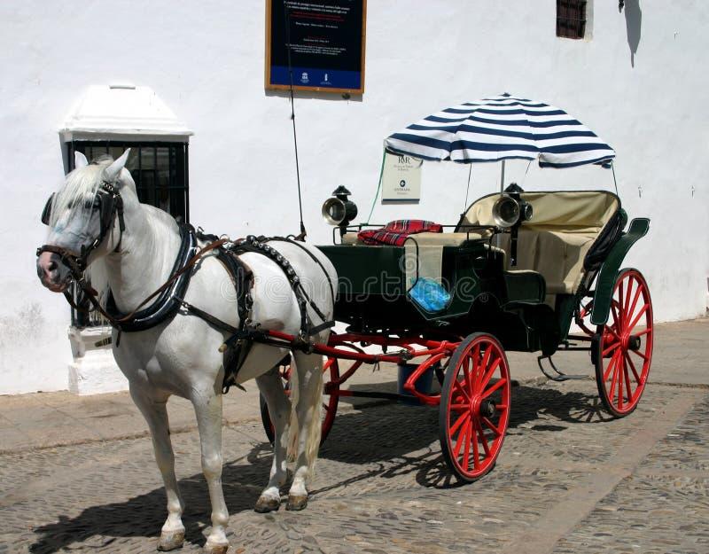 Pferd und Buggy in Spanien lizenzfreies stockbild