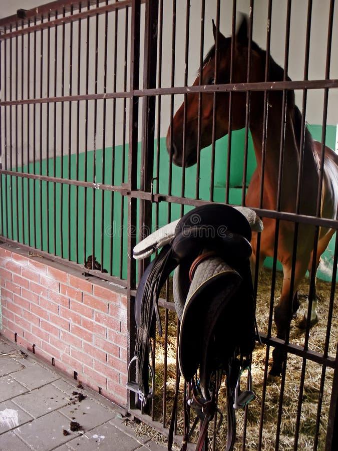 Pferd und Sattel im Stall lizenzfreies stockfoto